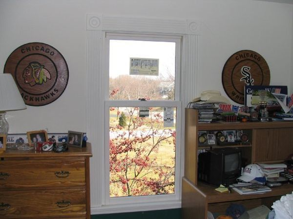 Replacement Window in Buffalo Grove, IL (1)